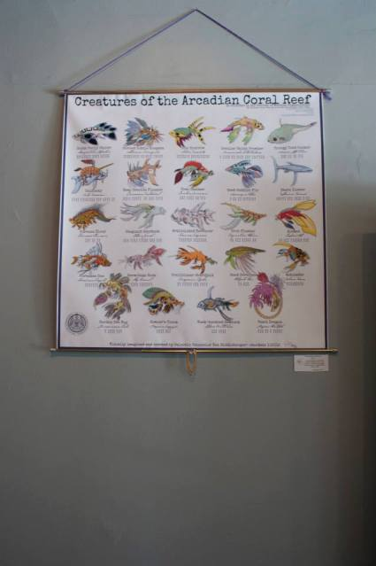A Chart on various species of fish on Mars